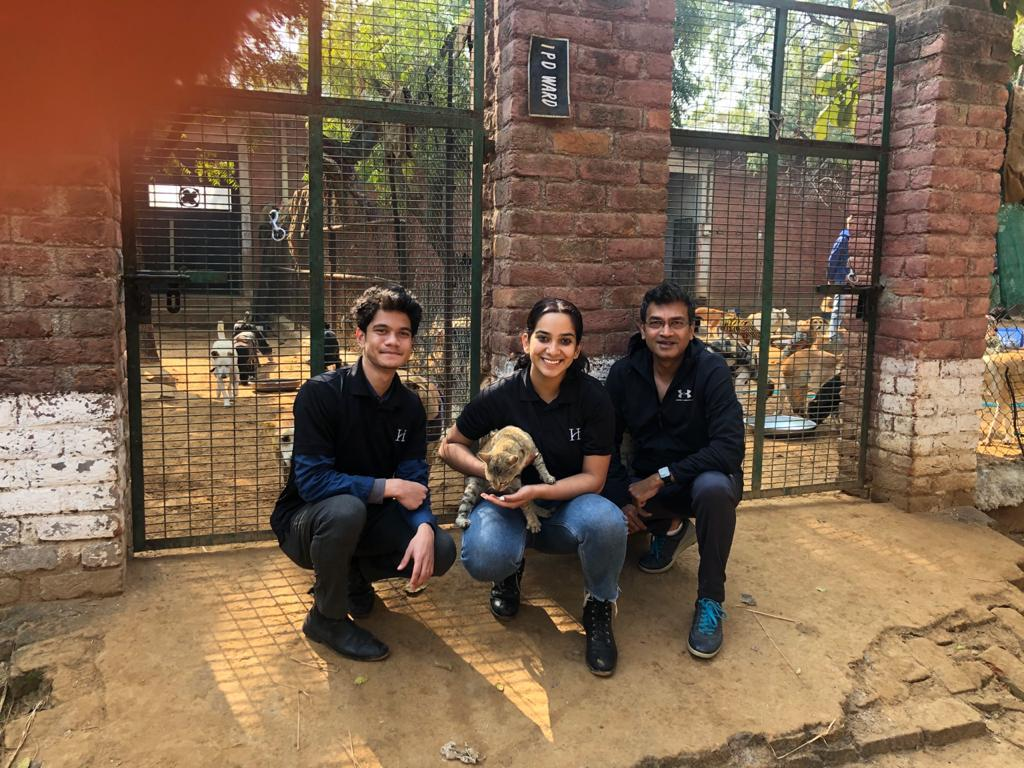Animal CSR 10